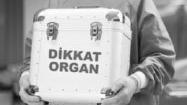 Organ, Doku ve Hücre Nakli
